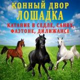 Я конный двор ЛОШАДКА!