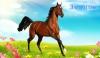 Конь по кличке ЗВОНОК