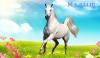 Конь по кличке МАЛЫШ